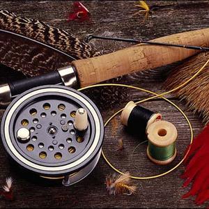 Охотничьи и рыболовные магазины Болони